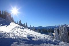 Bum_Winter_16